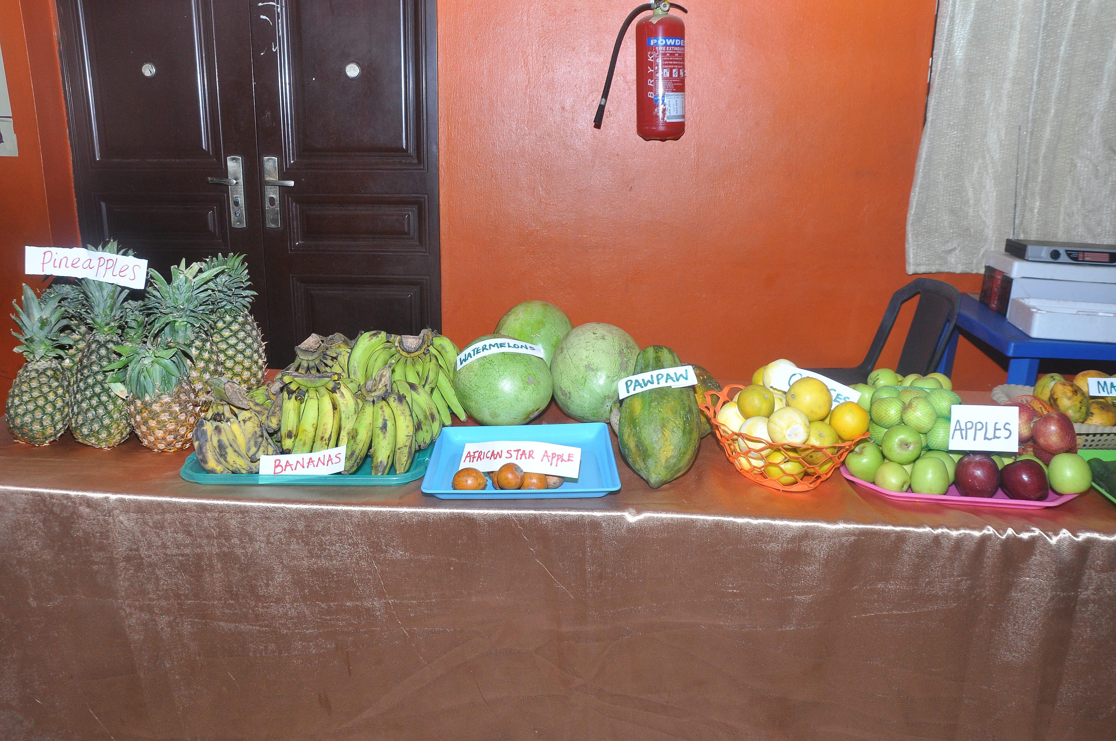 fruits_health_nursery_school_theme_presentations_riverside_montessori (1)